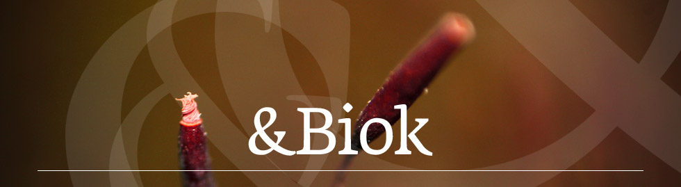 &Biok